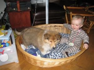 Første kvelden hjemme, 8uker gammel, Elly Amanda på 9mnd syns Bonnie var helt topp ;-)